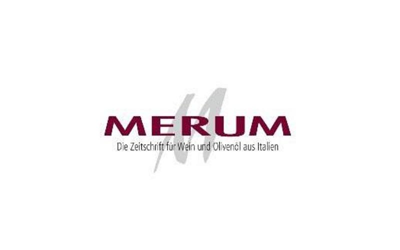 merum-logo_540